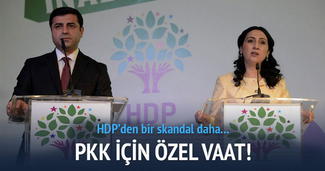 HDP'den skandal vaat!