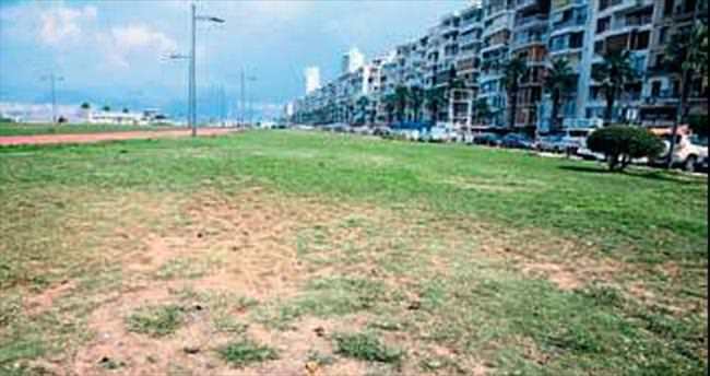 Kordon'da çimler kurumaya başladı