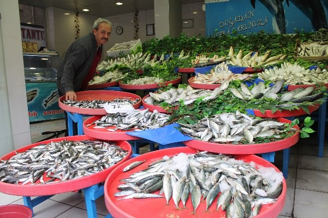Niğde'de Tezgahlardaki Balıkların Fiyatı Vatandaşın Bütçesine Uygun