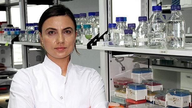Nobel ödülü, Sancar'ın eski öğrencisini şaşırtmadı