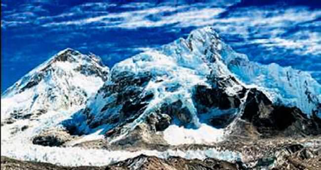 Himalayalar'da 211 yeni tür keşfedildi