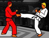 Dünya Karate Şampiyonası