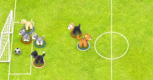 Kedi Köpek Futbolu