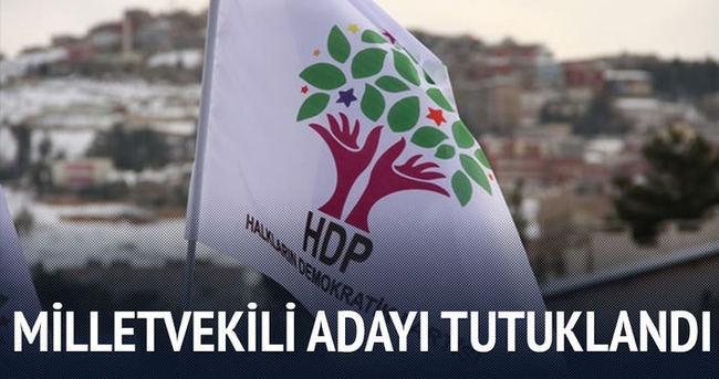 HDP'li milletvekili adayı tutuklandı