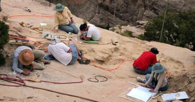 Devasa uçan sürüngen fosili bulundu
