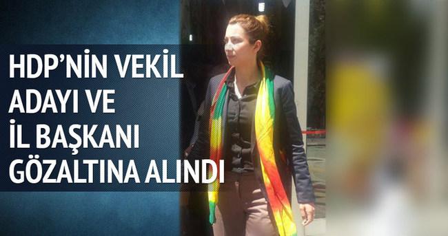 HDP milletvekili adayı ve il başkanı gözaltına alındı