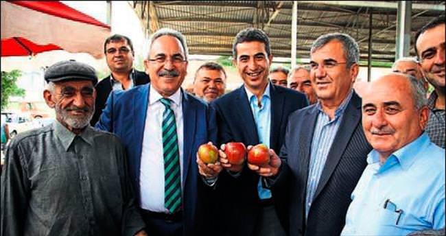Aydın'a elma sürprizi