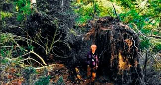 6 bin 500 yıllık ekolojik ev