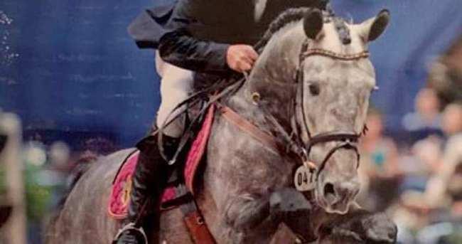 Şampiyon atı Macaristan'a kaçırdılar