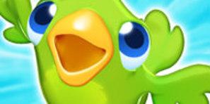 Renkli Deniz Taşları