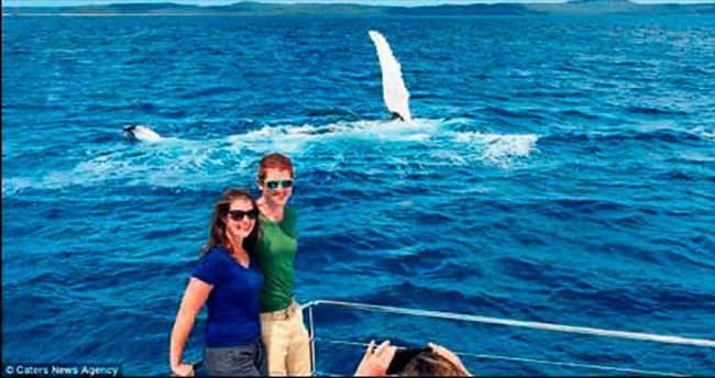 Hey, balina sen çekil arkadan!