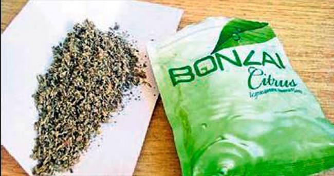 Bonzai maddesi satan oryantale 18 yıl ceza