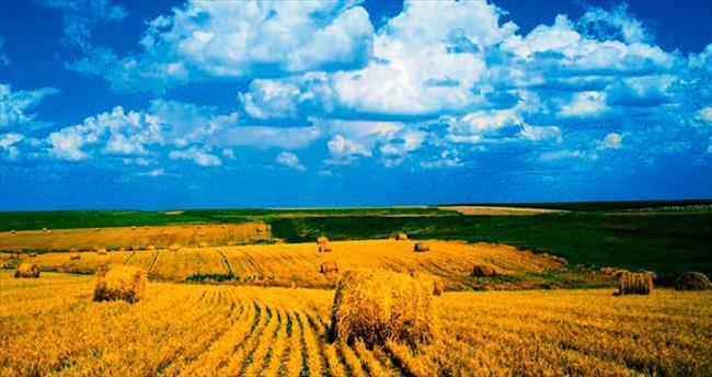 Bozok Traktör 5 yılda 5 kat büyüyecek