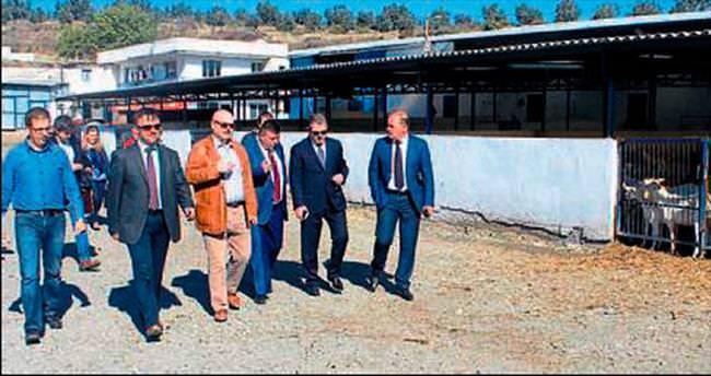 Arnavutluk heyeti işbirliği çağrısı yaptı