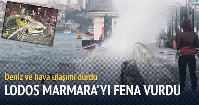 Marmara'da lodos çilesi