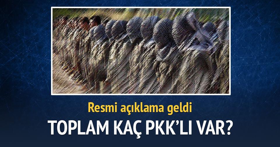 İşte toplam PKK'lı sayısı