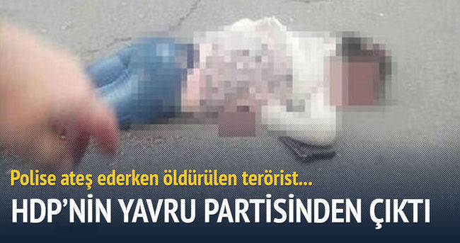 Öldürülen terörist HDP'nin yavru partisinden