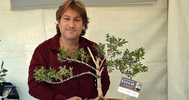 'Bonzai'yi araştırırken 'bonsai' sanatçısı oldu