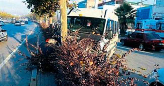 Minibüs ağaca çarptı: 10 yaralı