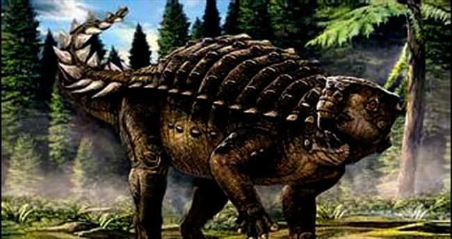 Yeni bir dinozor türü bulundu