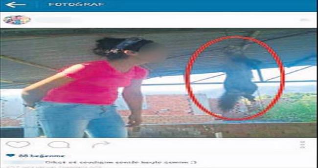 Kedi asan kıza idari para cezası kesildi