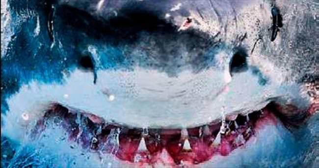 Kayıp Balık Nemo'daki köpekbalığının aynısı
