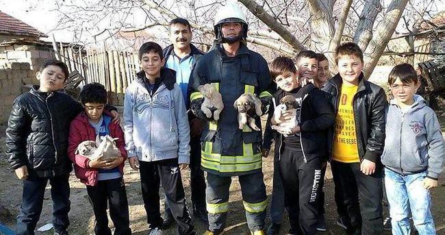 Çocukların dikkati yavru köpekleri kurtardı
