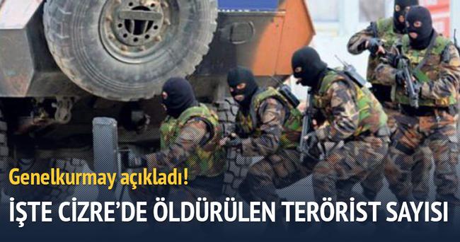 Cizre'de etkisiz hale getirilen terörist sayısı açıklandı