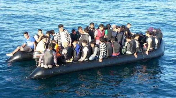 Foça'da 146 kaçak kurtarıldı