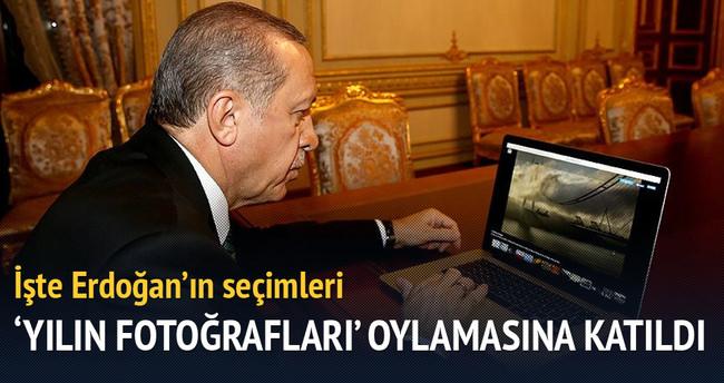 Erdoğan 'AA Yılın Fotoğrafları' oylamasına katıldı