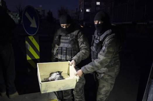 Diyarbakır'da enkaz altında kalan kediyi kurtardılar