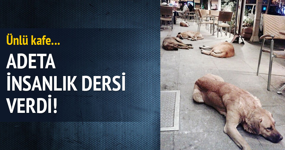 Eskişehir'den 'insanlık' fotoğrafı