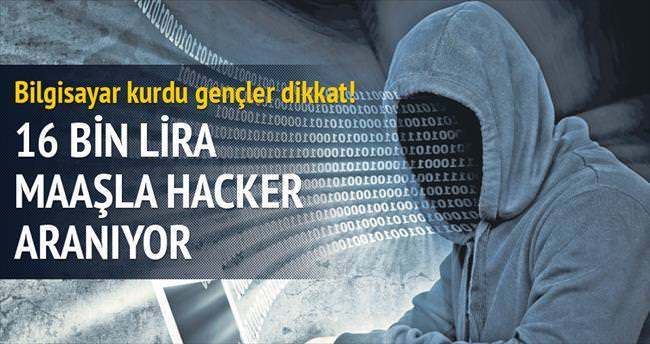 16 bin lira maaşla hacker aranıyor