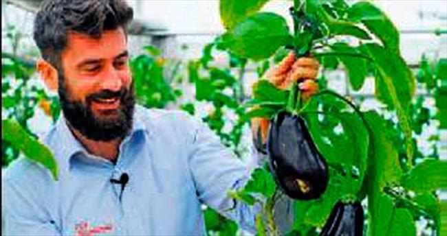 Aynı bitkiden iki sebze üretildi