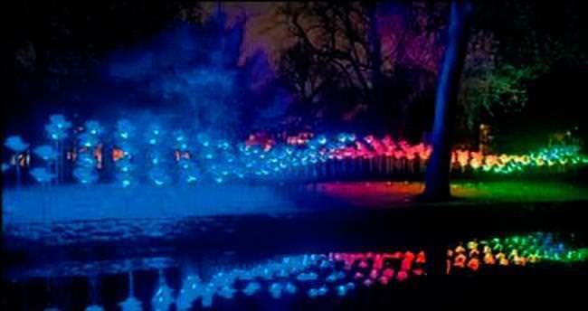Londra'da kış ışıkları yanıyor