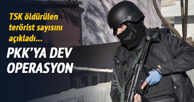 Şırnak'ta 12 PKK'lı öldürüldü