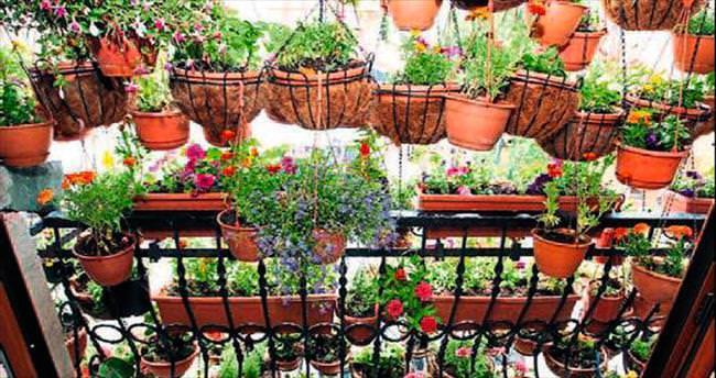 Antalya'nın en güzel balkonları yarışacak