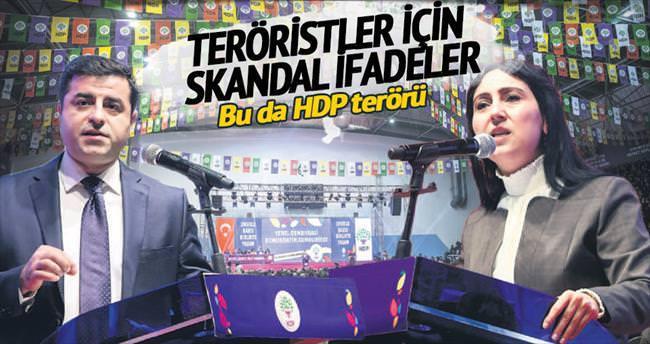 Bu da HDP terörü