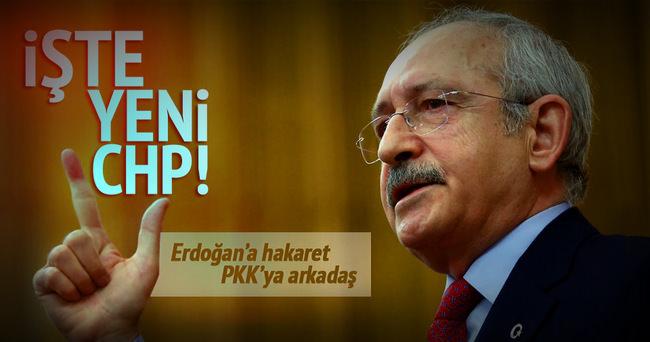 Erdoğan'a hakaret, PKK'ya arkadaş