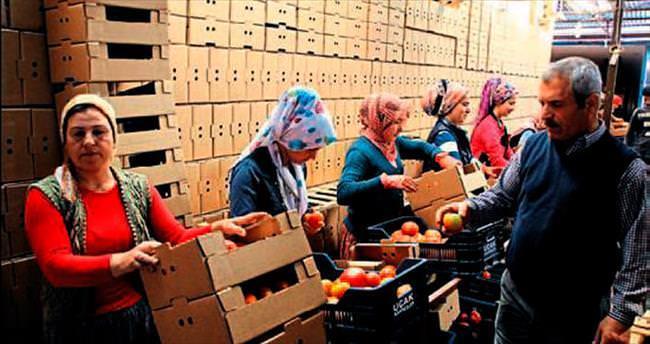 Antalya'nın ihracatı 13 yılda 6 kat arttı