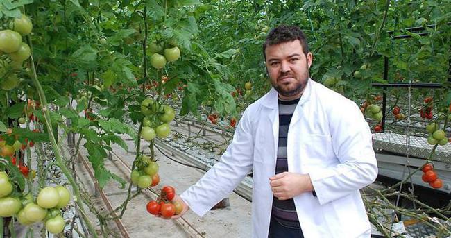 Sebzeleri 'bilgisayar' ile üretiyorlar