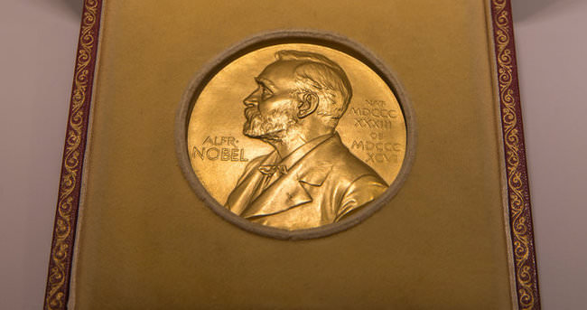 Nobel Tıp Komitesi'nin istifası isteniyor