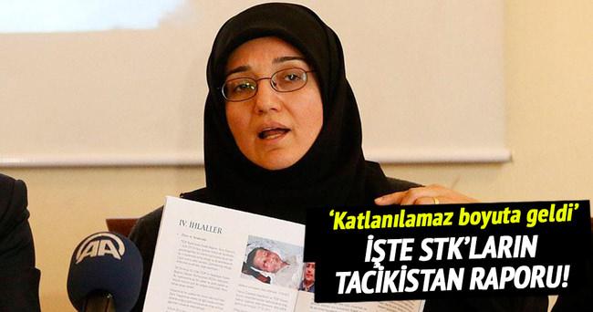 STK'lardan Tacikistan raporu