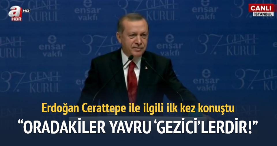 Erdoğan'dan Cerattepe açıklaması