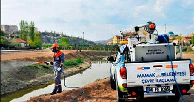 Mamak Belediyesi larva mücadelesine başlıyor