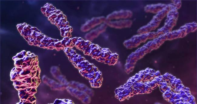 Genetik Hastalıklar tanı merkezi açıldı