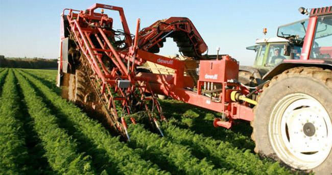 Tarım işçisinin günlük ücreti yüzde 8,9 arttı