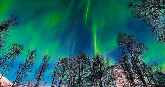 Tromso'da ışık avı