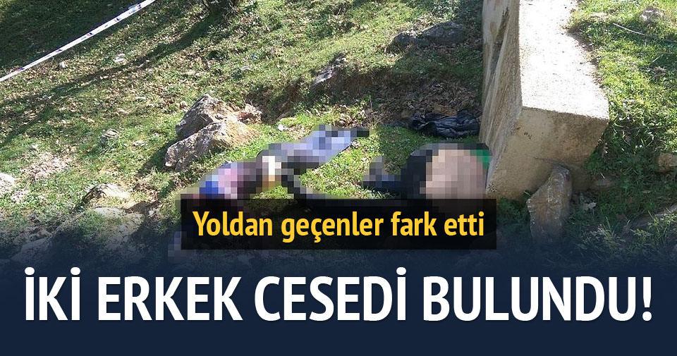 2 kişi ormanlık alanda ölü bulundu