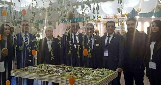 Türkler Japonya'da büyük ilgi gördü